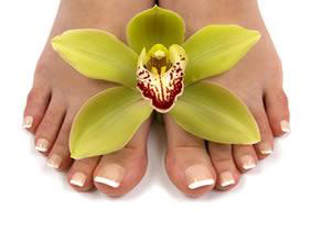 Bio Sculpture Permanent French or Coloured Gel on Toes
