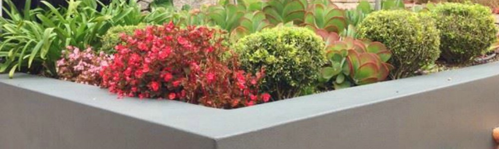 Sydney Landscaping, Construction & Garden Maintenance