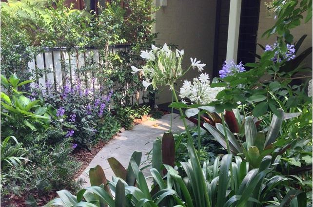 Small garden idea - lush foliage surrounds garden path