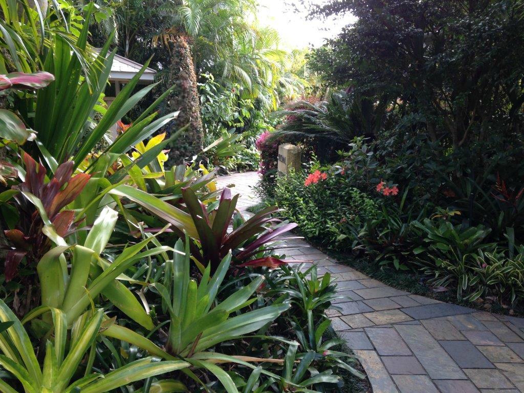 Subtropical garden - strata landscaping