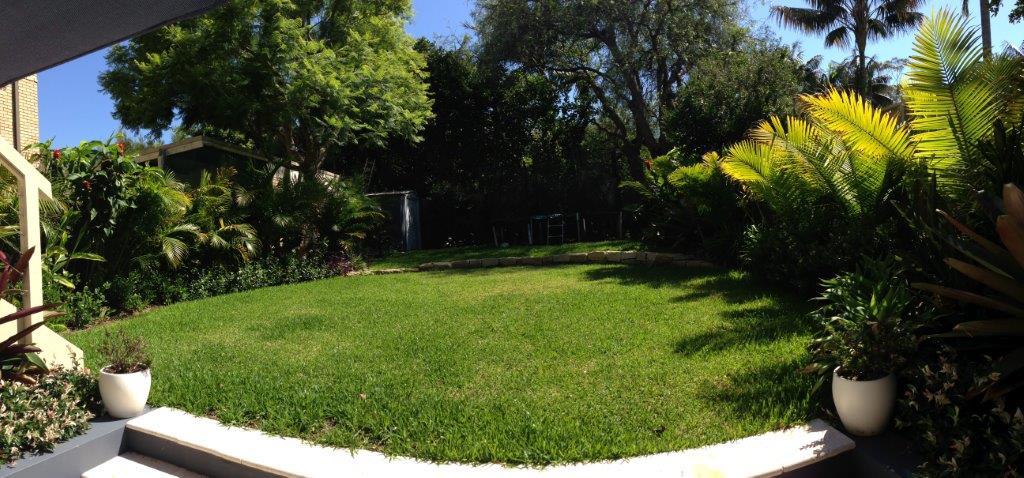 Freshwater Garden Sydney Landscaping - lush lawn
