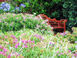 small garden ideas - with Lutyens style teak bench