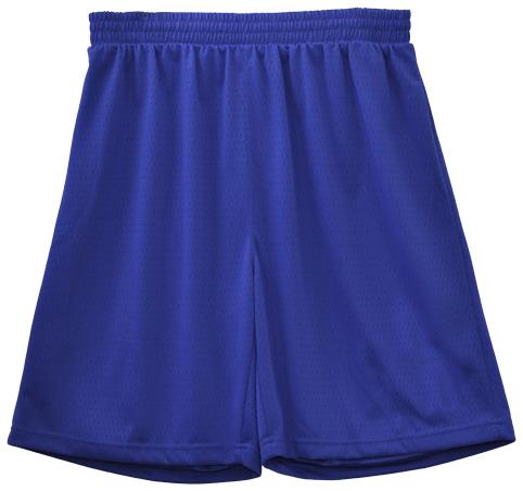 sportswear/basketball/TS81/shorts/SS21_Royal